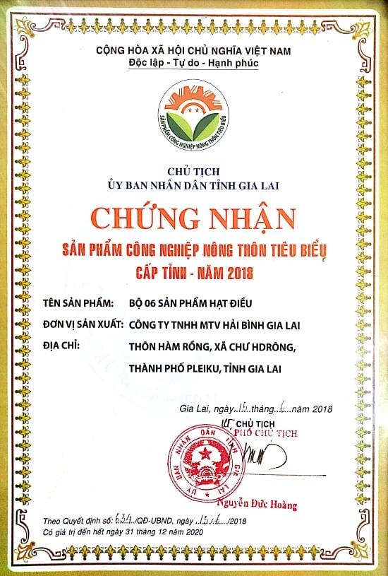 Hai Binh Gia Lai 6